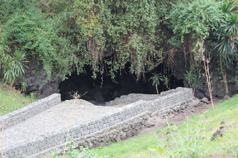Rwanda Tours to Nyungwe Forest & Musanze Cave in Rwanda