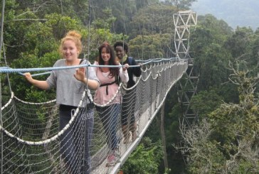 Top Tourist Places to Visit in Rwanda