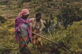 A Snapshot of COVID-19 in Rwanda