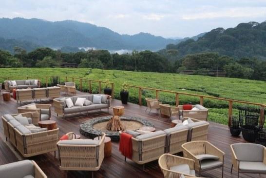 Encounter Luxury Rwanda Primate Holidays